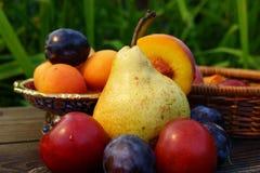 Frutas del verano: pera, melocotón, ciruelo, albaricoque. Imágenes de archivo libres de regalías