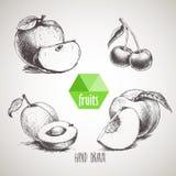 Frutas dibujadas mano del estilo del bosquejo fijadas Imagenes de archivo