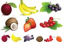 Frutas diferentes com folhas ilustração stock