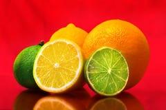 Frutas diversas imagem de stock royalty free