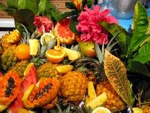 Frutas do cocktail Imagem de Stock