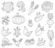 Frutas do Doodle, vegetais Fotografia de Stock Royalty Free