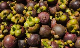 Frutas do mangustão fotografia de stock