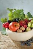Frutas do outono em uma bacia imagens de stock