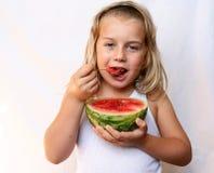 Frutas do verão fotografia de stock royalty free