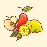 Frutas do vetor Fotos de Stock Royalty Free