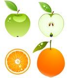 Frutas do vetor. ilustração stock