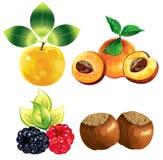 Frutas dos ícones Foto de Stock Royalty Free