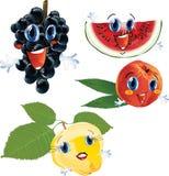 Frutas dos desenhos animados Foto de Stock