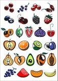 Frutas e iconos de la baya Imagenes de archivo