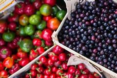 Frutas e legumes Imagem de Stock