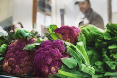 Frutas e legumes frescas e orgânicas nos fazendeiros locais março Foto de Stock