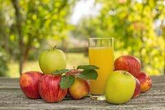 Frutas e suco fotografia de stock