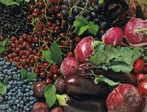 Frutas e verdura azuis Imagens de Stock