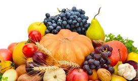 Frutas e verdura em um fundo branco Imagens de Stock Royalty Free