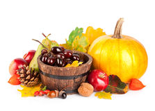 Frutas e verdura outonais da colheita fotografia de stock royalty free