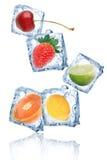 Frutas en cubos de hielo Imagen de archivo
