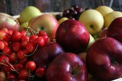 Frutas en la cesta Imagenes de archivo