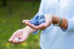 Frutas en vez de las drogas imagen de archivo libre de regalías