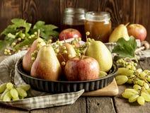 Frutas estacionales Imagen de archivo