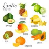 Frutas exóticas aguacate, piña, papaya, mandarina, mango, kiwi, carambola, cal Imagen de archivo libre de regalías