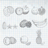 Frutas exóticas fijadas Foto de archivo