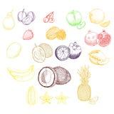 Frutas exóticas fijadas Imagen de archivo libre de regalías