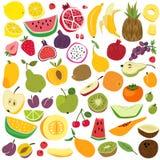 Frutas fijadas Verano divertido colorido fresco de la comida de los ni?os de la fruta del lim?n de la sand?a del pl?tano de la pi ilustración del vector