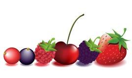Frutas frescas ilustração do vetor