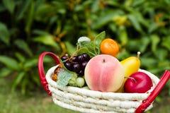 Frutas frescas Imagem de Stock