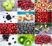 Frutas frescas Fotografia de Stock Royalty Free