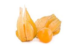Frutas del Physalis en blanco Foto de archivo libre de regalías