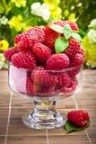 Frutas frescas de la frambuesa en el cubilete de cristal Fotos de archivo libres de regalías