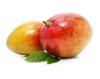 Frutas frescas del mango con las hojas verdes aisladas Foto de archivo