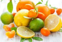 Frutas frescas do citrino Imagens de Stock Royalty Free