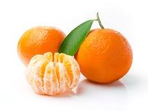 Frutas frescas do Tangerine Foto de Stock