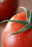 Frutas frescas do tomate Imagens de Stock Royalty Free
