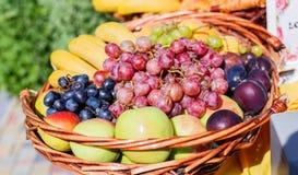 Frutas frescas en una cesta Manzanas, ciruelos, uvas y plátanos en la tabla de banquete del abastecimiento Foto de archivo libre de regalías