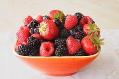 Frutas frescas orgánicas Imagen de archivo libre de regalías