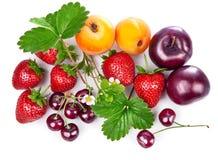 Frutas frescas y bayas en vida inmóvil con las hojas verdes Fotografía de archivo libre de regalías