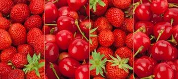 Frutas frescas y sanas de la colección panorámica Fotos de archivo libres de regalías