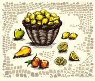 frutas hermosas con la cesta. Foto de archivo