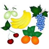 Frutas jugosas frescas fijadas Fotografía de archivo
