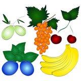Frutas jugosas frescas fijadas Fotografía de archivo libre de regalías