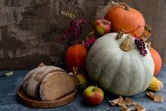 Frutas, maíz y calabazas Foto de archivo