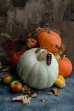 Frutas, maíz y calabazas Fotos de archivo