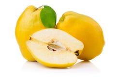 Frutas maduras del membrillo con la hoja y la rebanada aisladas Imágenes de archivo libres de regalías