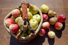 Frutas manuales a dedo Imágenes de archivo libres de regalías