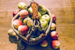 Frutas manuales a dedo Fotografía de archivo libre de regalías