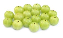 Frutas medicinais do amla Foto de Stock